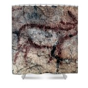 Cave Art: Covalanas Shower Curtain