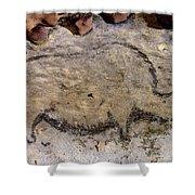 Cave Art: Rhinoceros Shower Curtain