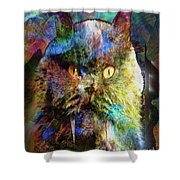 Cave Cat Shower Curtain