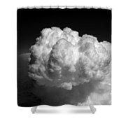 Cb1.981 Shower Curtain
