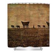 Pioneers Shower Curtain