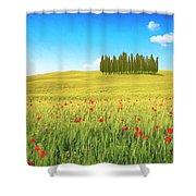 Cedar Grove And Poppies Shower Curtain