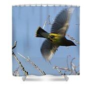 Cedar Waxwing In Flight Shower Curtain