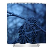 Cedars Of Ice II Shower Curtain