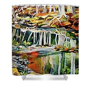 Ceeekbed, Fall Colors 4 Shower Curtain