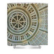 Ceiling Detail Shower Curtain