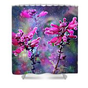 Celestial Blooms-2 Shower Curtain