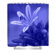 Celestial Love Shower Curtain