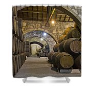 Cellar With Wine Barrels Shower Curtain