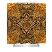 Celtic Mandala Abstract Shower Curtain