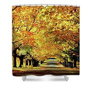 Cemetery Alley Shower Curtain