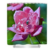 Cemetery Rose Shower Curtain