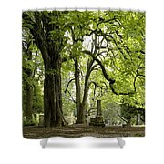 Cemetery  Trees 1 Shower Curtain