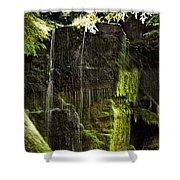 Centennial Falls Shower Curtain