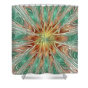 Center Hot Energetic Explosion Shower Curtain