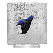 Center Of Attention- Scrub Jay Shower Curtain