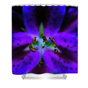 Center Of The Asiatic Lily Shower Curtain