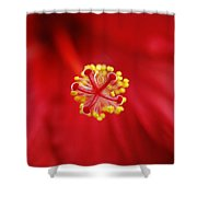 Center Of The Hibiscus Universe Shower Curtain