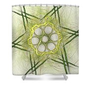 Center Of The Star Shower Curtain