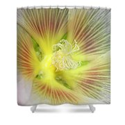 Center Sensation Shower Curtain