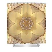 Center Star-flower Shower Curtain