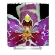 Centerpiece - Purple Orchid Macro Shower Curtain