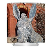 Central City Courthouse Donkey Shower Curtain