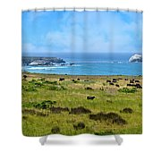 Central Coast Panorama - Hwy 1 Shower Curtain by Lynn Bauer