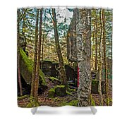 Central Hoist Walls Shower Curtain
