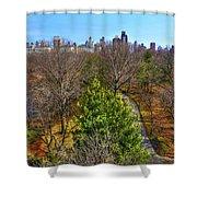 Central Park East Skyline Shower Curtain