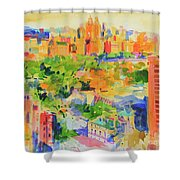 Central Park From The Carlyle Shower Curtain
