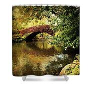 Central Park In Autumn Texture 6 Shower Curtain