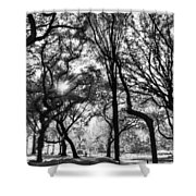 Central Park In Black And White Shower Curtain