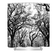 Central Park Nyc In Black And White Shower Curtain