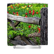 Central Park Shakespeare Garden New York City Ny Wooden Fence Shower Curtain