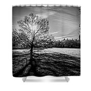 Central Park's Sheep Meadow - Bw Shower Curtain