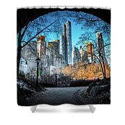 Central View Shower Curtain