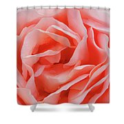 Centre - Rose Shower Curtain
