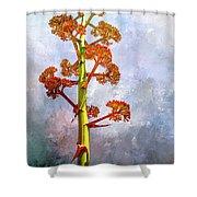 Century Plant Shower Curtain