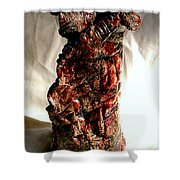 Ceramic Red Vase Shower Curtain