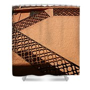 Cerbre France Stairs Shower Curtain