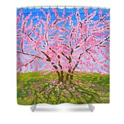 Cercis Tree, Oil Painting Shower Curtain