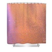 Certainty Shower Curtain