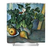 Cezanne: Still Life, C1888 Shower Curtain