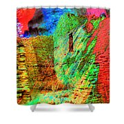 Chaco Culture Abstract Shower Curtain