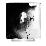 chaffinch Threshold Shower Curtain