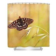 Chalcedon Butterfly Shower Curtain