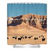 Chalk Cliffs Shower Curtain