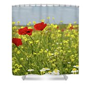 Chamomile And Poppy Flowers Meadow Shower Curtain