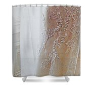Champagne Lace Shower Curtain